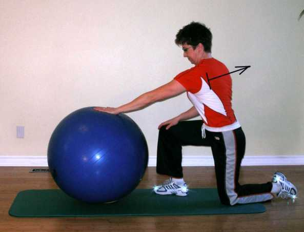 scapular protractionwith the exercise ball