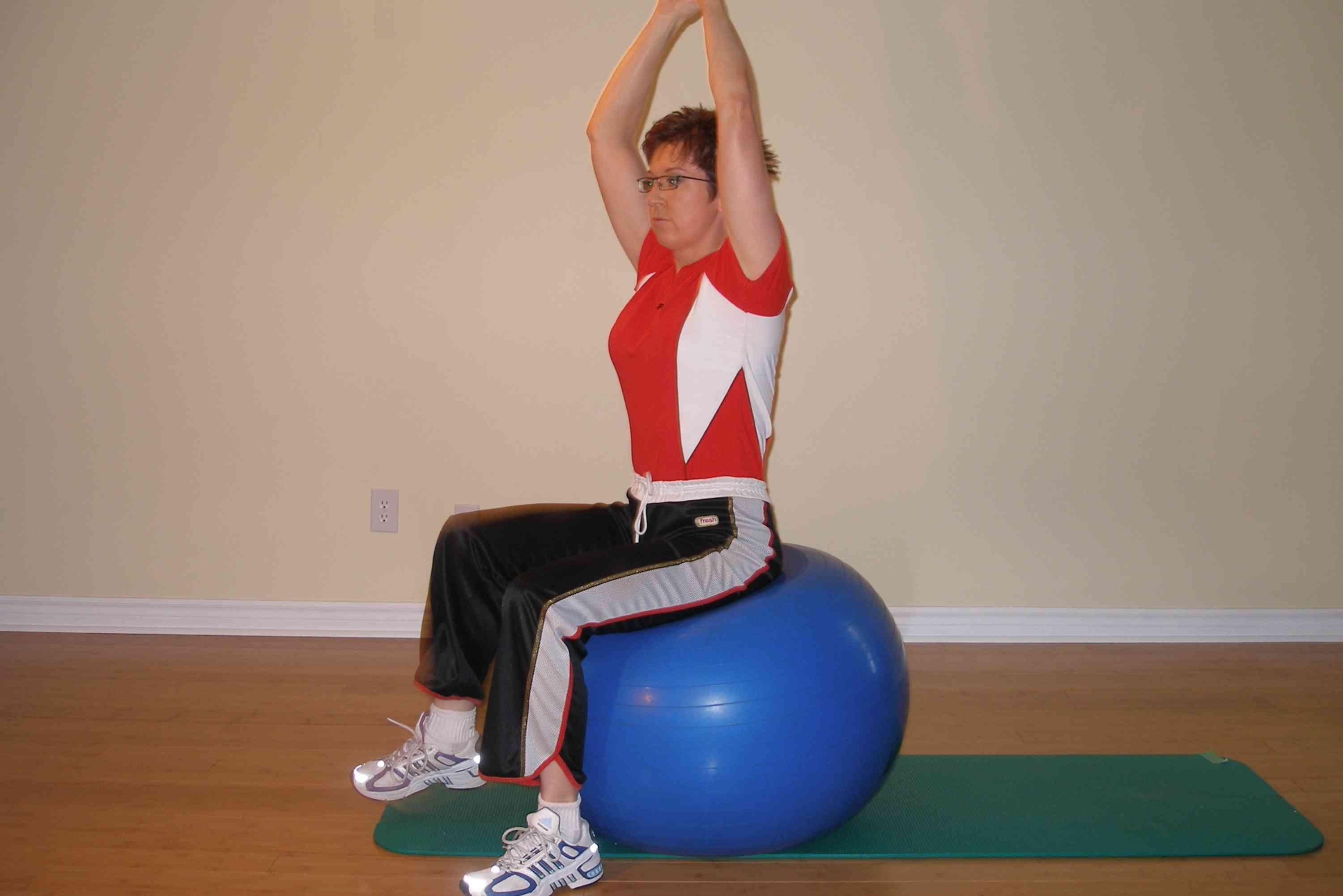 bilateral leg raise on the stability ball